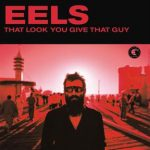 Eels, That Look You Give That Guy, paroles