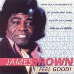 James Brown, I Got You, paroles