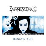 Evanescence, Bring Me To Life, paroles