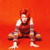 Ziggy-Stardust-home